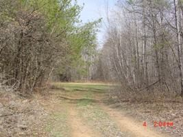 Oconto County Parks Reservations Campgrounds All